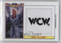 Ric Flair /299