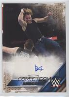 Dean Ambrose #14/50