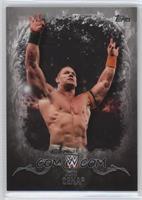 John Cena /50