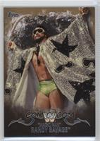 Randy Savage /10