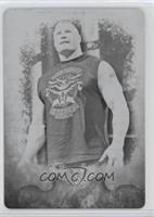 Brock Lesnar /1