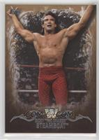 Ricky Steamboat /99