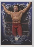 Ricky Steamboat /25
