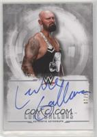 Luke Gallows /50