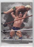 Legends - Rowdy Roddy Piper #/50