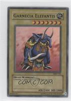 Garnecia Elefantis