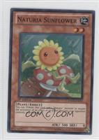 Naturia Sunflower