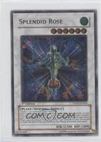 Splendid Rose (Ultimate Rare)
