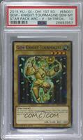 Gem-Knight Tourmaline [PSA 10 GEM MT]