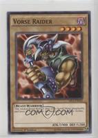 Vorse Raider