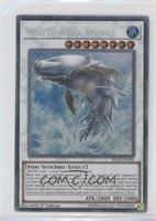 White Aura Whale